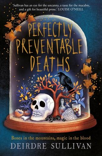 Perfectly Preventable Deaths cover - Deirdre Sullivan