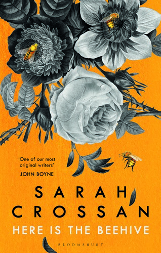 Sarah Crossan Here is the Beehive jacket