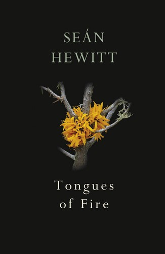 Sean Hewitt Tongues of Fire Cover