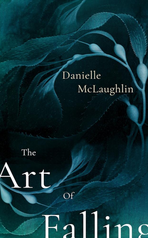 Danielle McLaughlin book cover